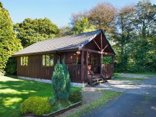 Nice Lodge with Satellite Or Cable TV and Television - Bude vacation rentals