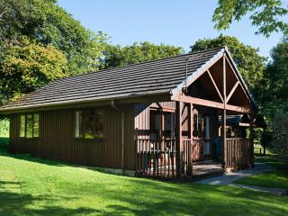 2 bedroom Lodge with Satellite Or Cable TV in Bude - Bude vacation rentals