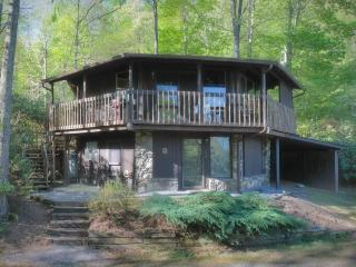 Comfortable Cottage with Deck and Internet Access - Burnsville vacation rentals