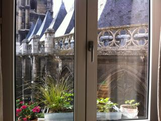 Great luminous flat in  Rouen between Paris & Se - Rouen vacation rentals