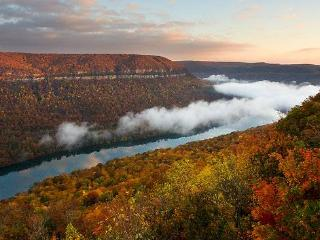 Tennessee River Gorge Island Cabin  $178 Weekdays - Chattanooga vacation rentals