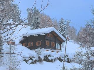 Ski-in ski-out chalet in 4-Vallées, sleeps 8, WiFi - Nendaz vacation rentals