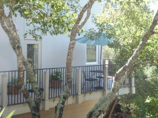 Beautiful 1 bedroom Condo in Sonoma - Sonoma vacation rentals
