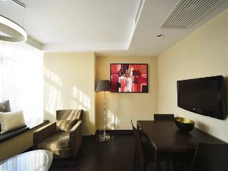 Modern 2Br apt in Heart of SH, Great Location - Shanghai vacation rentals