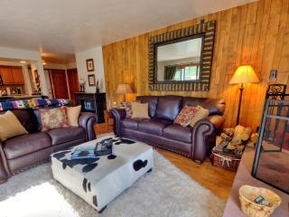 Newly-remodeled Beautiful 2bd/2ba Vail condo - Vail vacation rentals