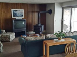 2 bedroom Apartment with Water Views in Gearhart - Gearhart vacation rentals