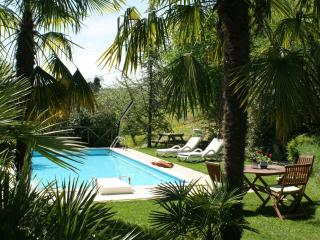 Private Villa, pool,wi-fi, pets allowed, Macerata - Sant'Angelo In Pontano vacation rentals