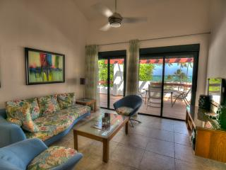 Ravishing 3 Bedroom Oceanfront Apartment S-L302 - Bavaro vacation rentals