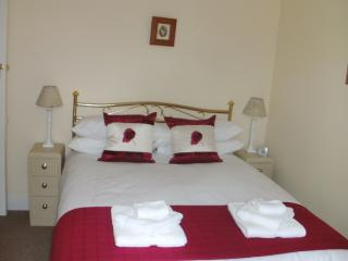 London House, Llanwrtyd Wells - Llanwrtyd Wells vacation rentals