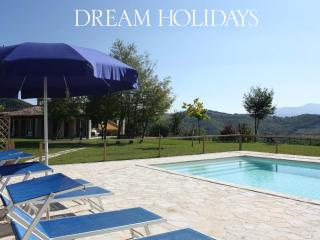 Private villa,11 sleeps, pool, pet-friendly, wi-fi - Mombaroccio vacation rentals