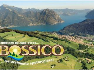 Nice House with Television and Microwave - Iseo vacation rentals