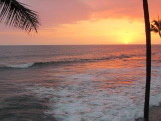 New Oceanfront ~ Wall Of Glass ~ Banyan Tree 301 - Kailua-Kona vacation rentals