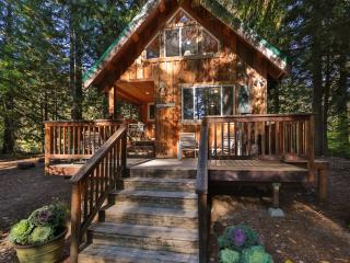 Charming and Secluded Riverfront cabin~Osprey Nest - Cashmere vacation rentals