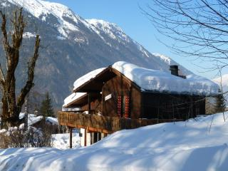 Chamonix Traditional wooden chalet with wonderful - Chamonix vacation rentals