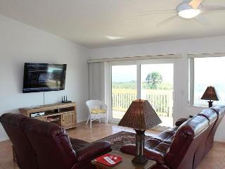 Dancin Dolphin, Upgraded, Sleeps 10, Flat Screens - Palm Coast vacation rentals