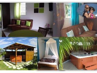 COCO ET MANGO 2 F2 EQUIPES avec spa et internet - Baillif vacation rentals
