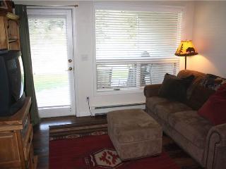 Conveniently Located  1 Bedroom  - PCI-1 - Breckenridge vacation rentals