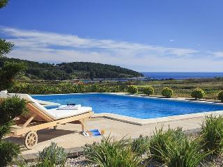 Luxury Villa Mar with Sea View, 80 Meters From Sea - Lumbarda vacation rentals