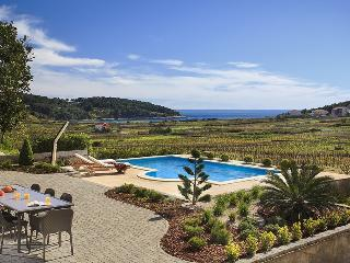 Luxury Villa Mar with Sea View, 80 Meters From Sea - Lumbarda vacation rentals