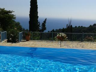 See View Villa With Infinity Pool - Pelekas vacation rentals