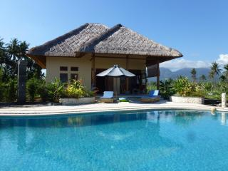 Villa, idyllic East Bali, 14m pool, restaurant - Amlapura vacation rentals