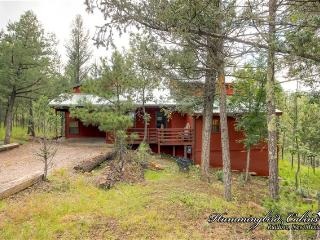 Perfect 4 bedroom Ruidoso Cabin with Internet Access - Ruidoso vacation rentals