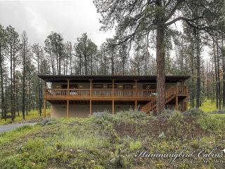 Peaceful E Z Feeling 684 - in Alto, NM - Ruidoso vacation rentals