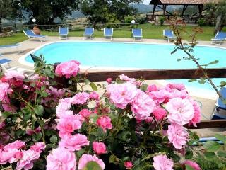 Agriturismo le Gore FIORDALISO - Sorano vacation rentals