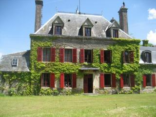 Bright 9 bedroom Castle in Loye-sur-Arnon - Loye-sur-Arnon vacation rentals