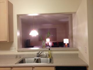 Charming Furnished Spacious Modern Townhome - Aurora vacation rentals