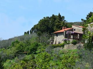 Castelfranco Di Sopra - 10567001 - Castelfranco di Sopra vacation rentals
