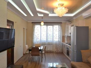 Nice Condo with Internet Access and Central Heating - Geghard vacation rentals