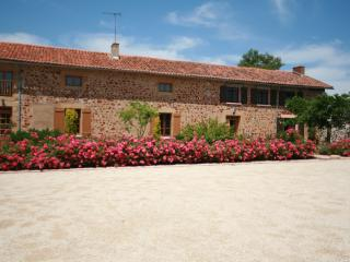 Comfortable 5 bedroom Farmhouse Barn in Availles-Limouzine - Availles-Limouzine vacation rentals