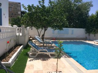2 Villas with private pool in Turgutreis/Bodrum - Turgutreis vacation rentals