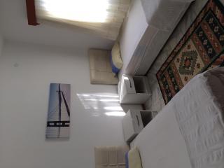 2 Villas with private pool in Turgutreis/Bodrum - Turgutreis vacation rentals
