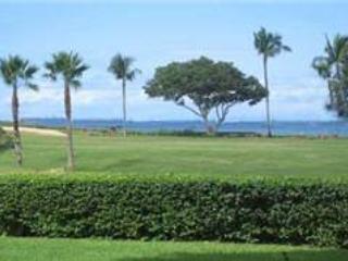 Maui Eldorado: Maui Condo J100 - Image 1 - Ka'anapali - rentals