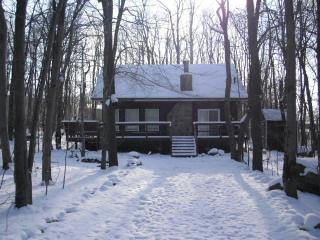 Woodland House!2014 TRIP ADVISOR WINNER - Mount Pocono vacation rentals