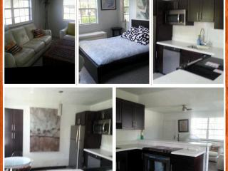 Downtown Fort Lauderdale FLATS: 2-bedroom/2-bath - Fort Lauderdale vacation rentals