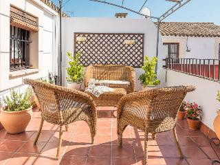 Beautiful 3 bedroom luxury duplex with private ter - Seville vacation rentals