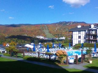 Mont Tremblant 2 bedrooms condo 1 Km from ski VIP Parking - Mont Tremblant vacation rentals