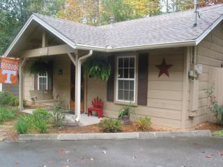 cute cozy cabin - Gatlinburg vacation rentals