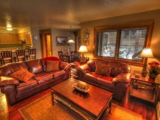 1633 Quicksilver - Lakeside Village - Dillon vacation rentals