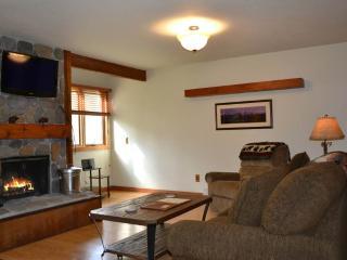Bright 1 bedroom Apartment in Wilson - Wilson vacation rentals