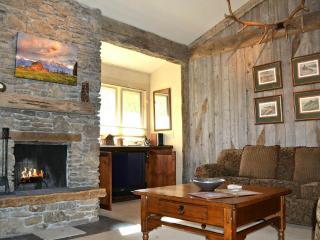 2 bedroom Apartment with Deck in Wilson - Wilson vacation rentals