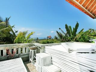 One of a kind private Ocean/Coconut view apartment - Medahan vacation rentals