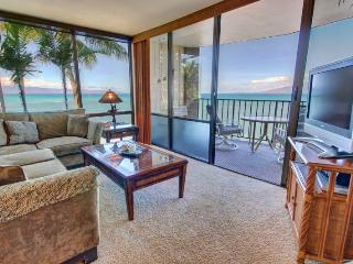 Nice Condo with Internet Access and Dishwasher - Lahaina vacation rentals