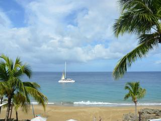Luxury and Spacious 1 bedroom on the beach - Sosua vacation rentals