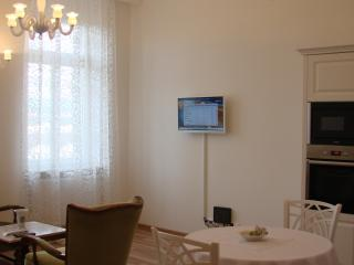 Nice Condo with Internet Access and Dishwasher - Karlovy Vary vacation rentals