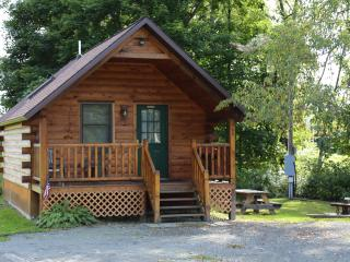 Water Front Private cabin Island 275 Ft 15-07 - Deposit vacation rentals