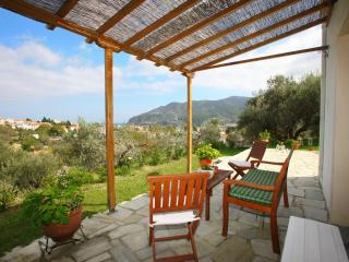 Nice 1 bedroom Apartment in Skopelos - Skopelos vacation rentals